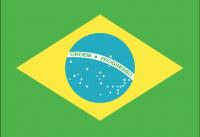 BRAZIL Nylon Country Flag