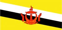 BRUNEI Nylon Country Flag
